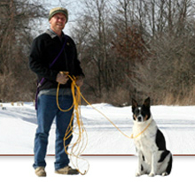 Long Line Dog Training – Train your dog to stop pulling! How to train your dog on a long line to walk nicely & stop pulling.